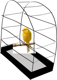 The standard canary in a cage.